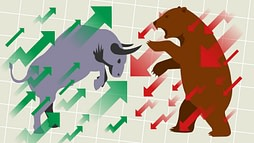 What is bull and bear market? What to do in bull and bear market?